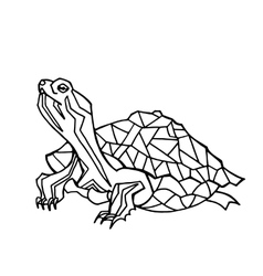 hand drawn of turtle vector image