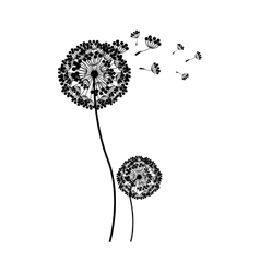 silhouette couple dandelion and fly petals vector image vector image