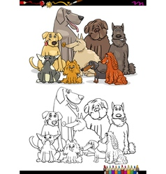 cartoon dogs coloring book vector image