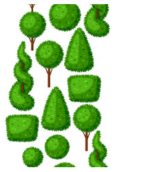 boxwood topiary garden plants seamless pattern vector image