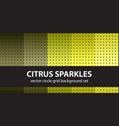 Circle pattern set citrus sparkles seamless vector