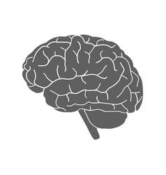 brain sign vector image