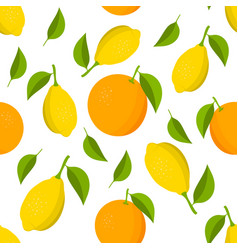Citrus pattern tropic fruit background with vector