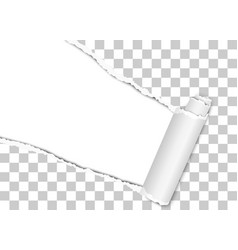 Diagonally torn hole in transparent sheet of vector