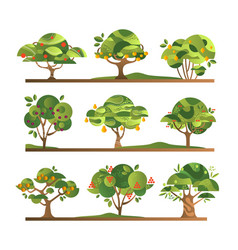 Different fruit trees set apple orange lemon vector