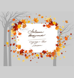 Fall maple trees vector