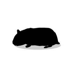 hamster rodent black silhouette animal vector image