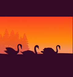 Silhouette of swan at sunset scenery vector