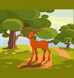 summer wildlife landscape deer with large vector image