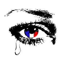Crying eye with flag of France vector image