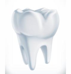 tooth medicine 3d icon vector image