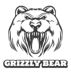 Grizzly bear head logo vector image vector image