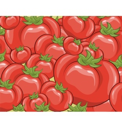 Red tomatoes background vector image vector image
