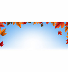 Autumn banner with colorful leaves vector