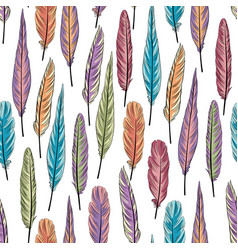 feather seamless pattern birds feathers over vector image