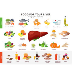 Food for liver infographic elements isolated on vector