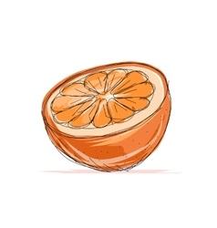 Sketch of orange for your design vector