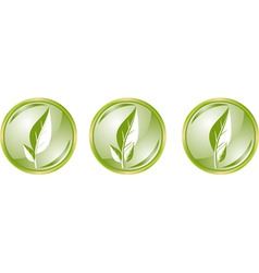 glossy buttons with leaves vector image
