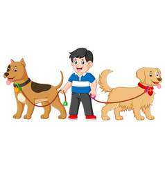 a boy is standing between two big cute dog vector image