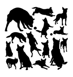 australian cattle dog silhouettes vector image
