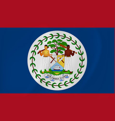belize waving flag vector image