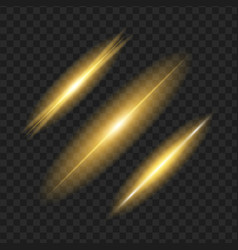 glowing lights on black transparent background vector image