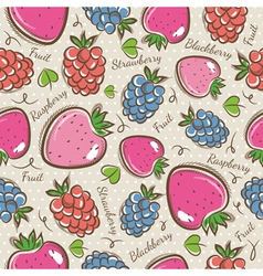 Patterns with strawberry raspberry and blackberry vector image