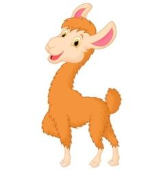 Happy llama cartoon vector image
