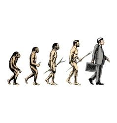 Businessman evolution vector image