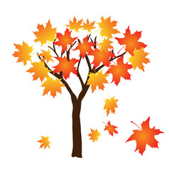 autumn tree with falling leaves on vector image