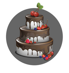 Cake with berries and chocolate vector