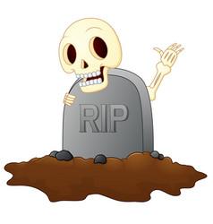 Cartoon skull in graveyard isolated white backgrou vector