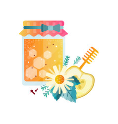 Jar of honey apple chamomile and spices vector