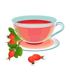 tea with rose hips in transparent glass and saucer vector image