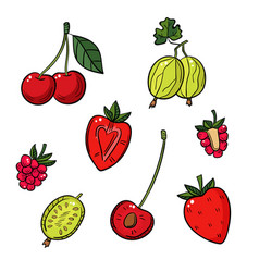a set of different berries on a white background vector image