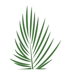 areca palm leaf icon cartoon style vector image