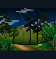 background scene with trees in the forest vector image