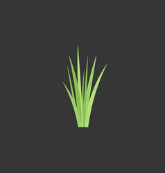 Bunch of green grass flat icon vector