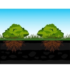 Bushes and root in ground vector