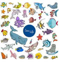 cartoon sea life animal characters set vector image