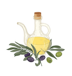 elegant drawing of extra virgin oil in glass jug vector image