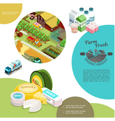 isometric agriculture colorful template vector image