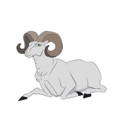 Mountain ram lying vector