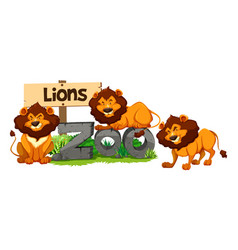 three lions in the zoo vector image