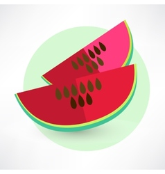 Watermelon icon vecotr vector
