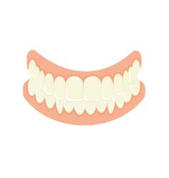 Set of false teeth implanted jaw vector