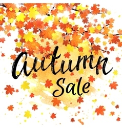 Autumn sale lettering banner Seasonal discount vector image