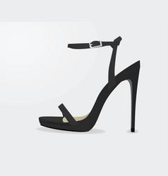 grey sandal vector image