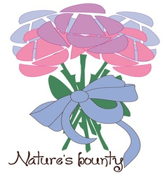 Natures Bounty vector