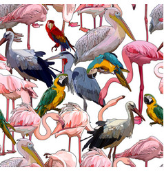 seamless background with tropical birds vector image
